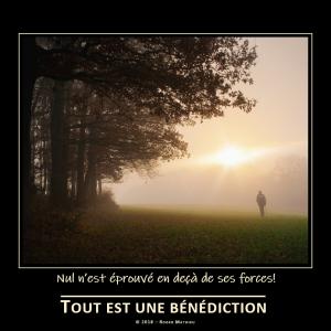 Nul_nest_eprouve_en_deca_de_ses_forces