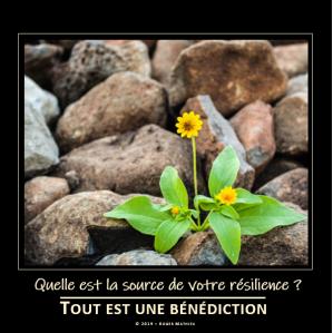 quelle_est_la_source_de_votre_resilience